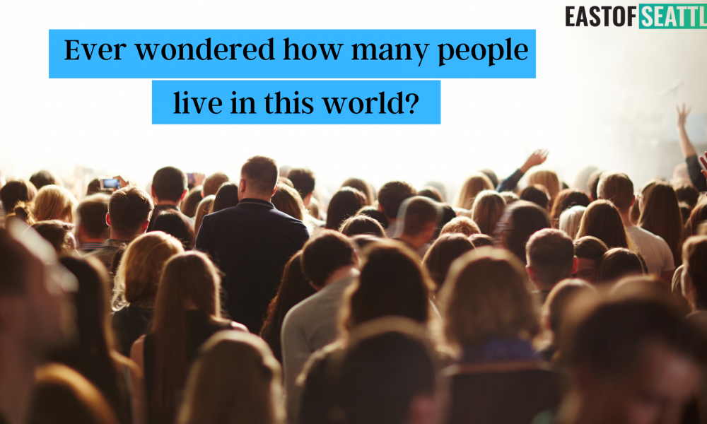 Ever wondered how many people live in this world?