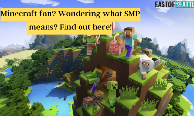 Minecraft fan? Wondering what SMP means? Find out here!