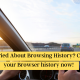 Worried About Browsing History? Clear your Browser history now!